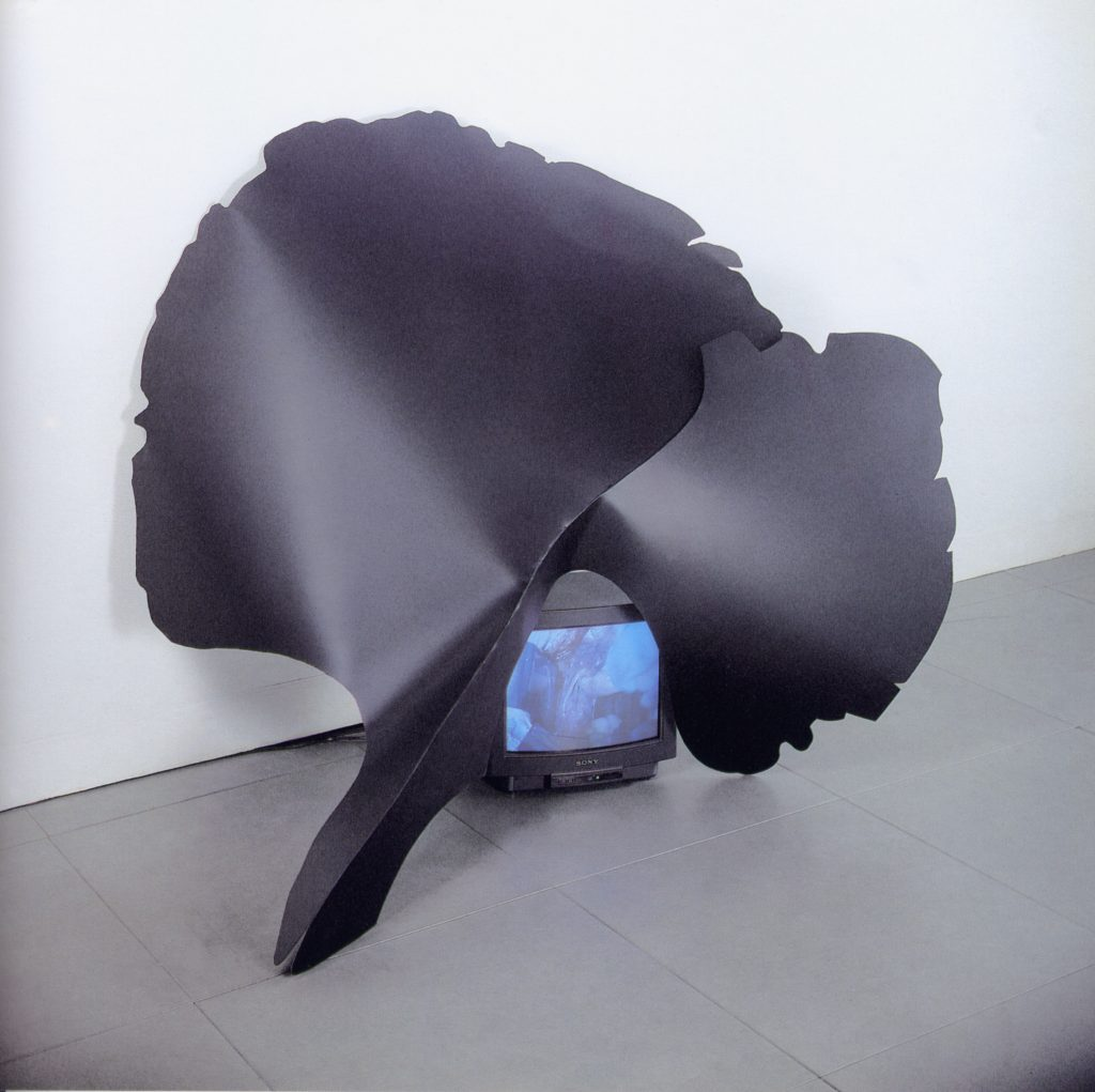 Infiorescenza Temporale, 1993, iron, monitor, 150 x 140 cm