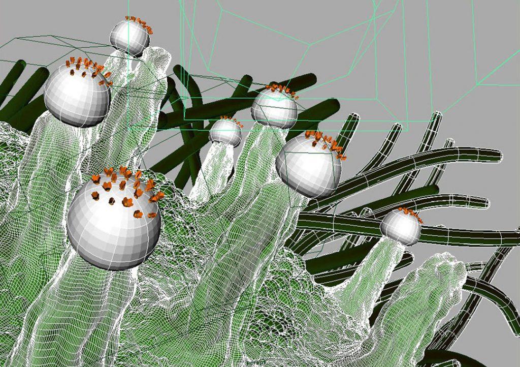 Senza titolo IX (Nanomushroom), 2009, stampa digitale  e acrilico su carta cotone, 28 x 50 cm