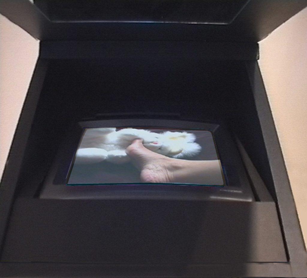 L'Offrande du Cœur, 1998, particolari