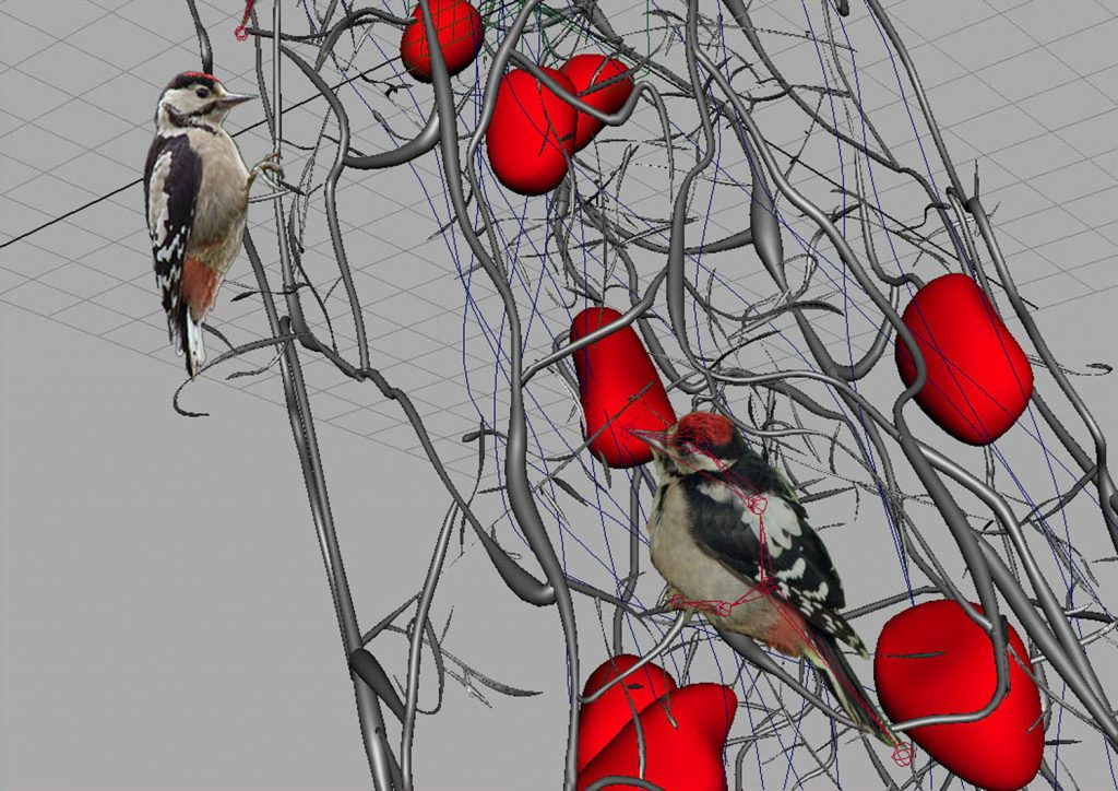 Senza Titolo, (Spyrogira and woodpecker), 2009-2011, digital print on cotton paper, 32 x 45 cm