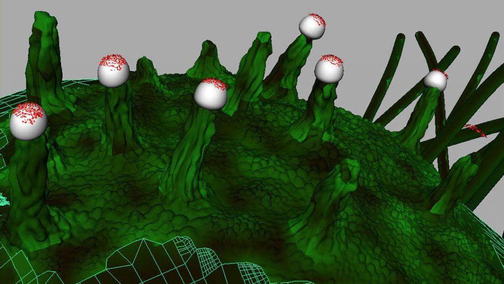 Senza titolo VI (Nanomushroom), 2009, stampa digitale  e acrilico su carta cotone, 28 x 50 cm