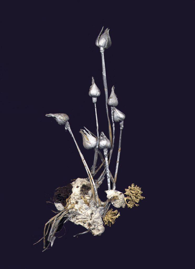 Seven Flowers, 1998, sette fiori, materiale plastico e argento, cm. 16x6